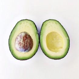avocado3-613x613