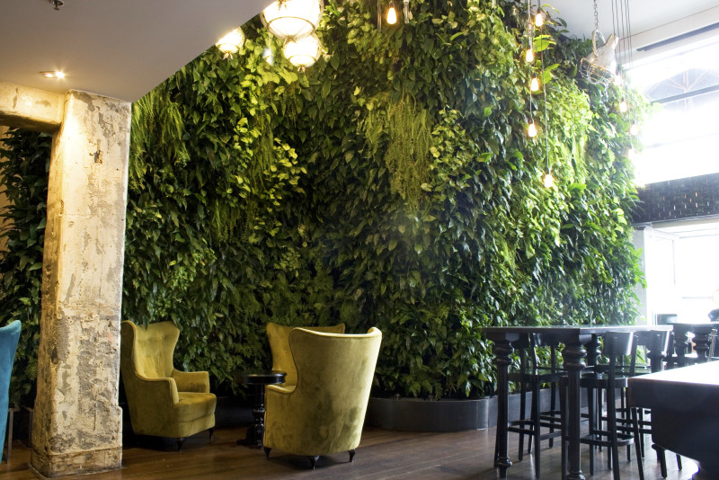 Woolly-vertical-wall-planting-3-800x534