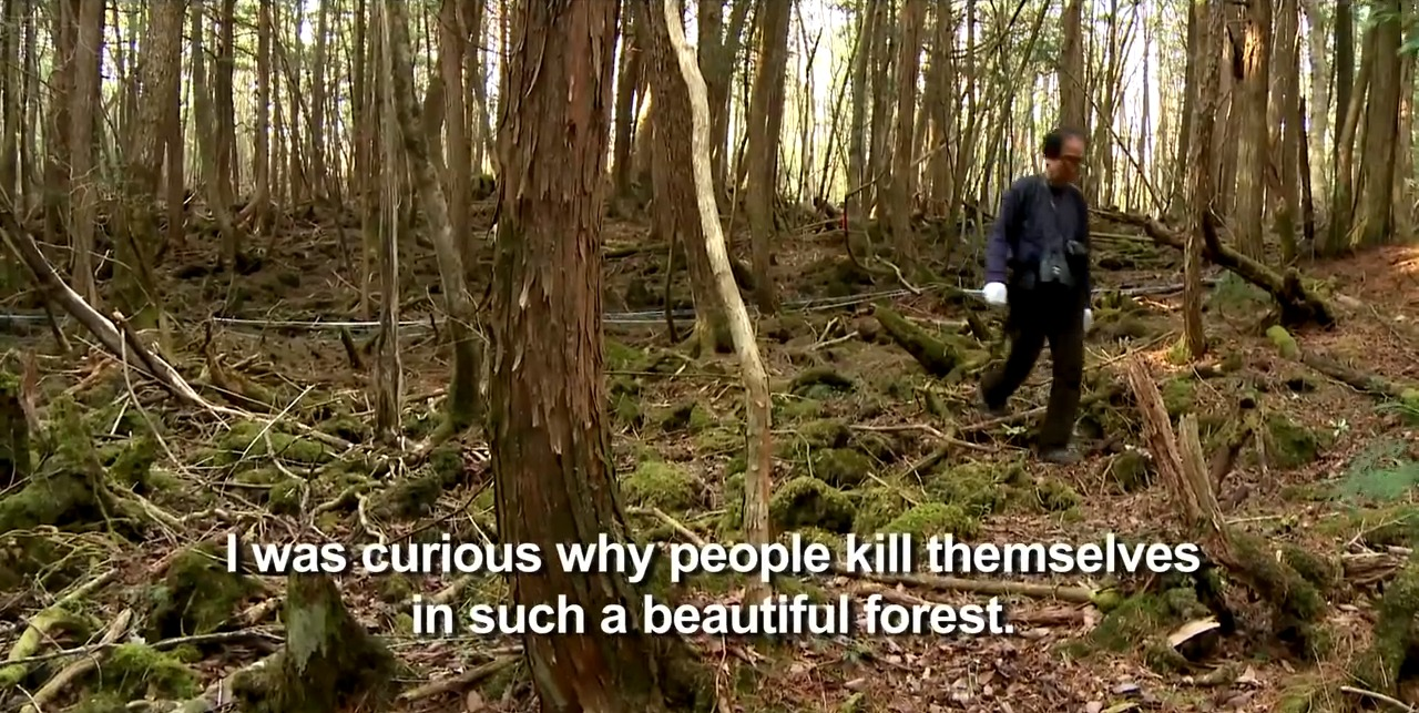 aokighara: the story behind the real suicide forest